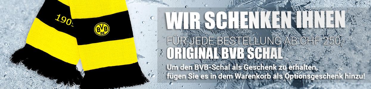 BVB Schal Aktion