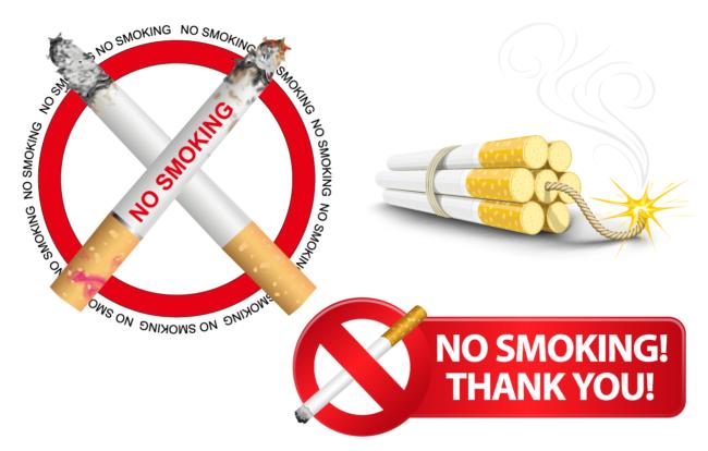 "PVC Tafel Gross ""No Smoking""-0"