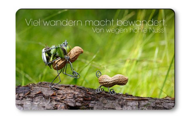 "Magnethaftkarten - Motiv ""Wanderlust""-0"